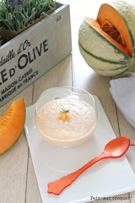 Mousse de melon veggie