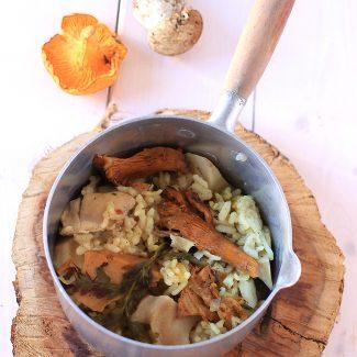 Risotto aux champignons frais Cocotte Tupperware Micro Minute