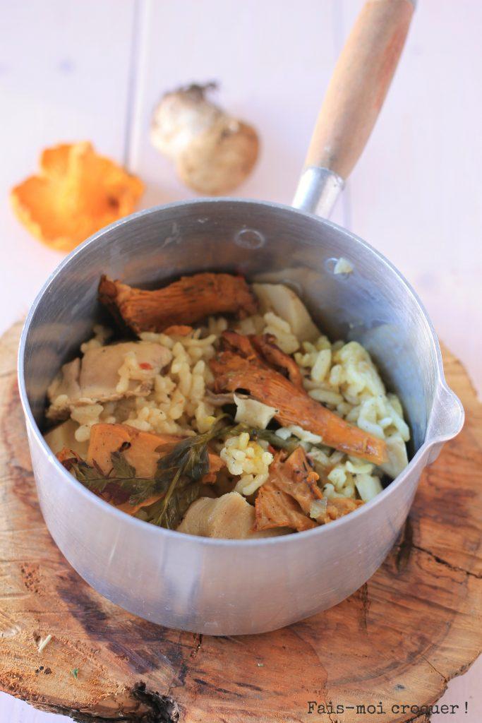 risotto aux cèpes et girolles