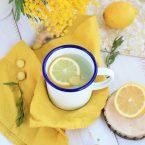 Eau chaude detox citron gingembre